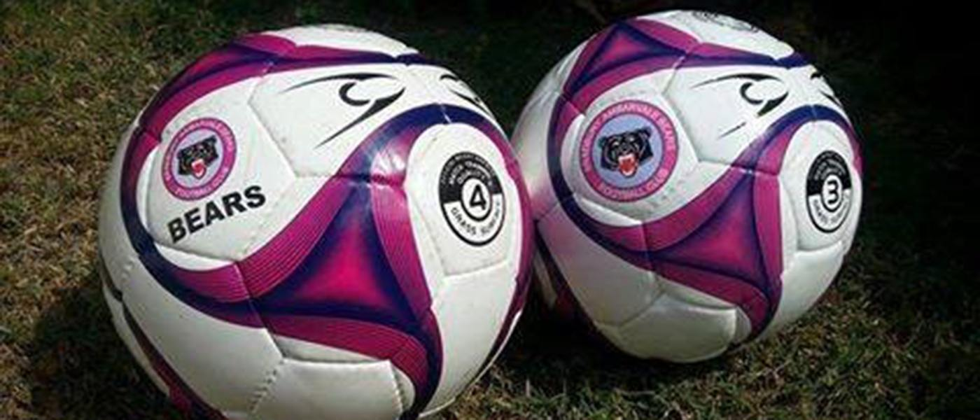BAFC Soccer Balls
